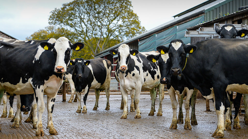 Agriculture 'part of the solution' to climate change as UK sees major drop in air pollution
