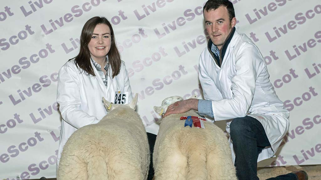 Reserve supreme champions, a pair of South Country Cheviots from Andrew Reid, Langholm.