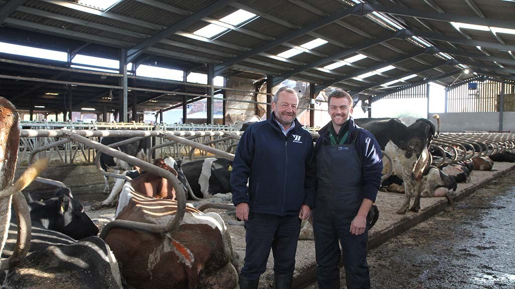 Dairy special: CowSignals developed to improve cow health and welfare