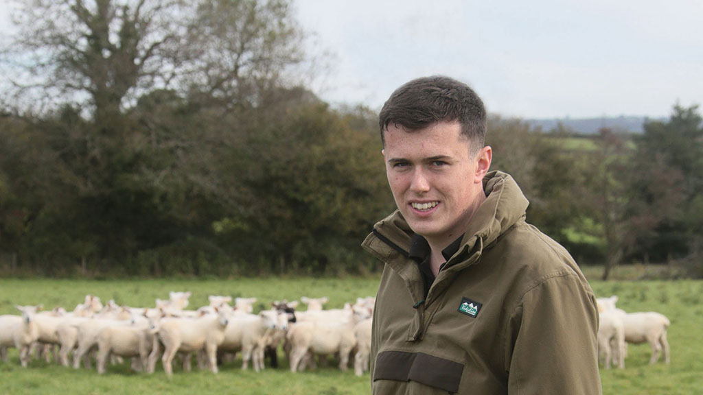 Young farmer's successful direct sales business stems from selling lamb to teachers