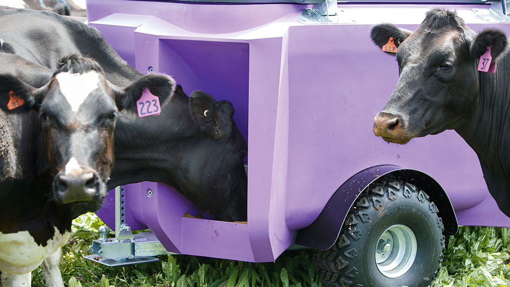 Farmers can pre-determine how much feed should be dispensed to each animal with a Zeddy.