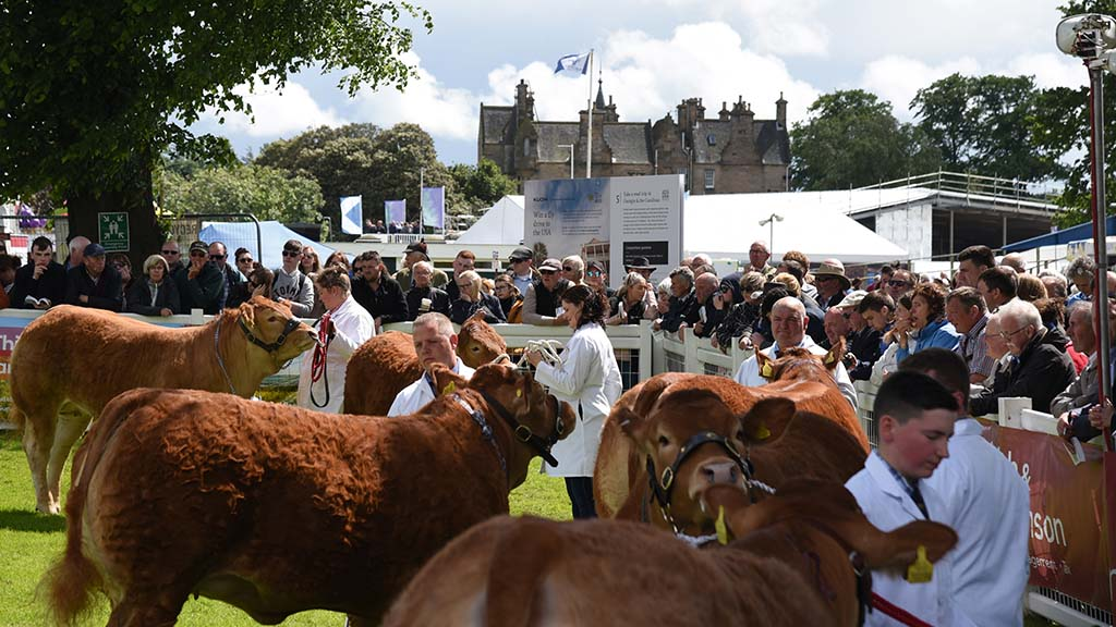 Highland Show auditors issue warning as society faces £6m black hole