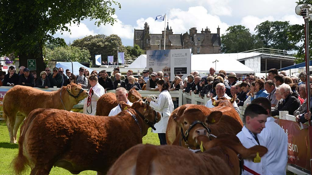 From the editor: Pandemic poses historic challenge to agricultural shows