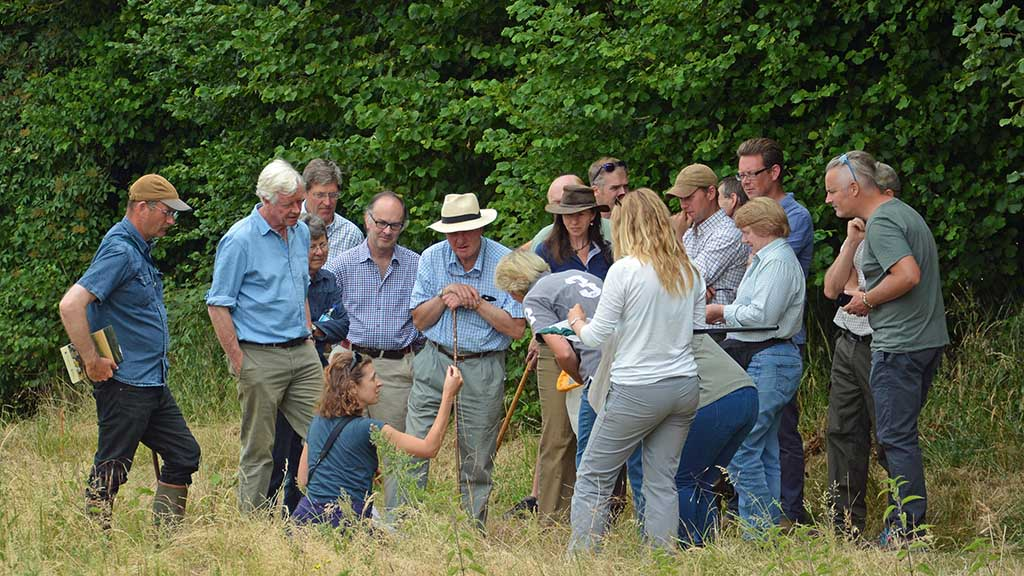 The Martin Down Farm Cluster is made up of 120 farmer-led groups
