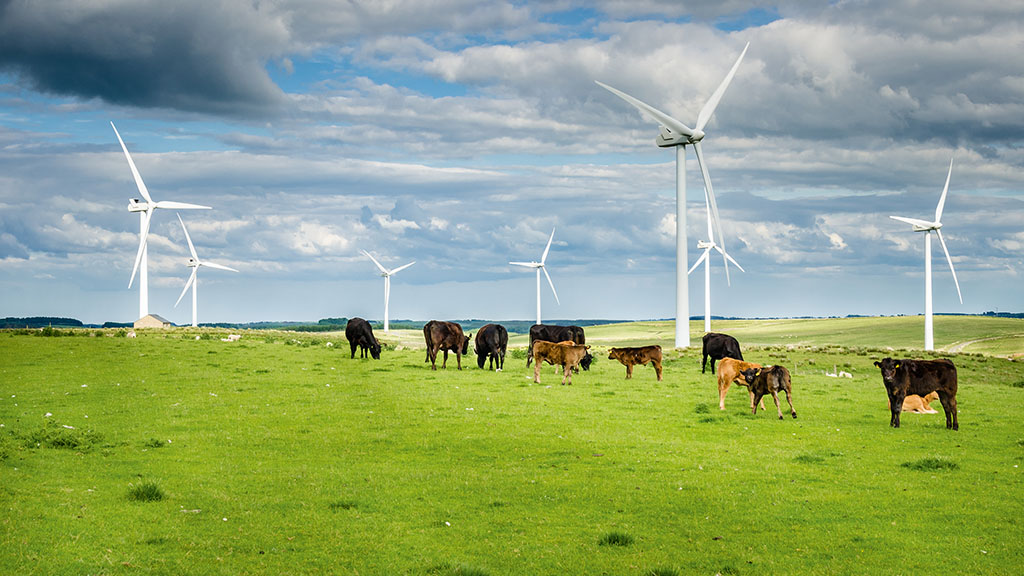 Farmers set to benefit as wind subsidies given green light by Government