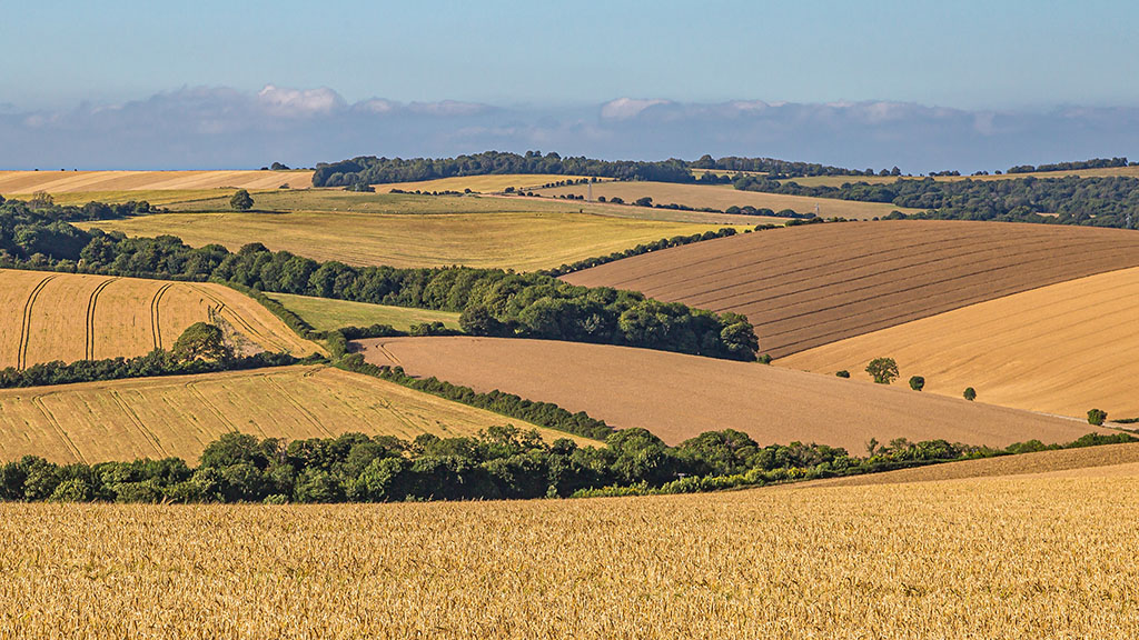 Scotland's first strategic cereal farm to explore regenerative agriculture and carbon