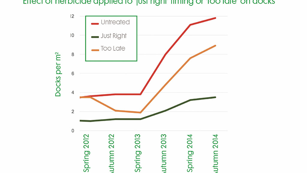 Effect of herbicide applied to just right timing or too late to docks