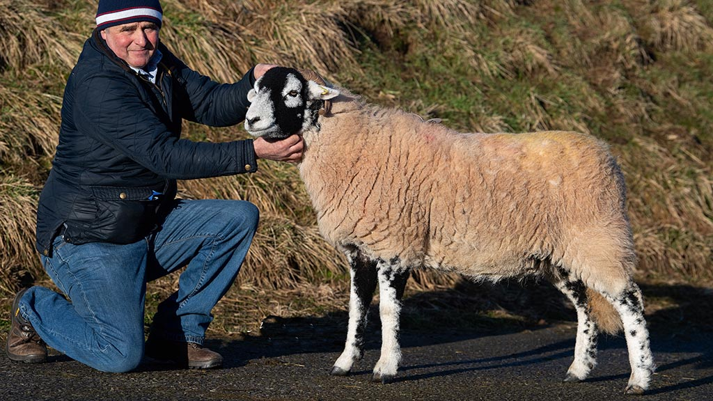 Swaledale records smashed at Hawes