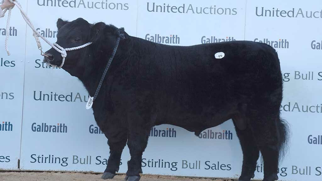 Cardona Jewel Eric U054, which sold for 13,000gns.