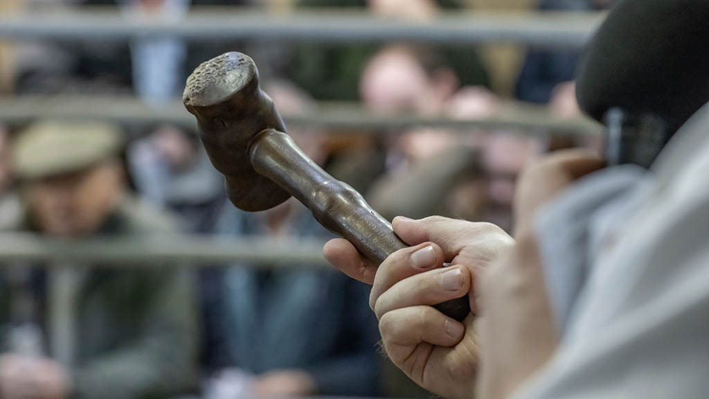 Auction marts tighten safety measures back up
