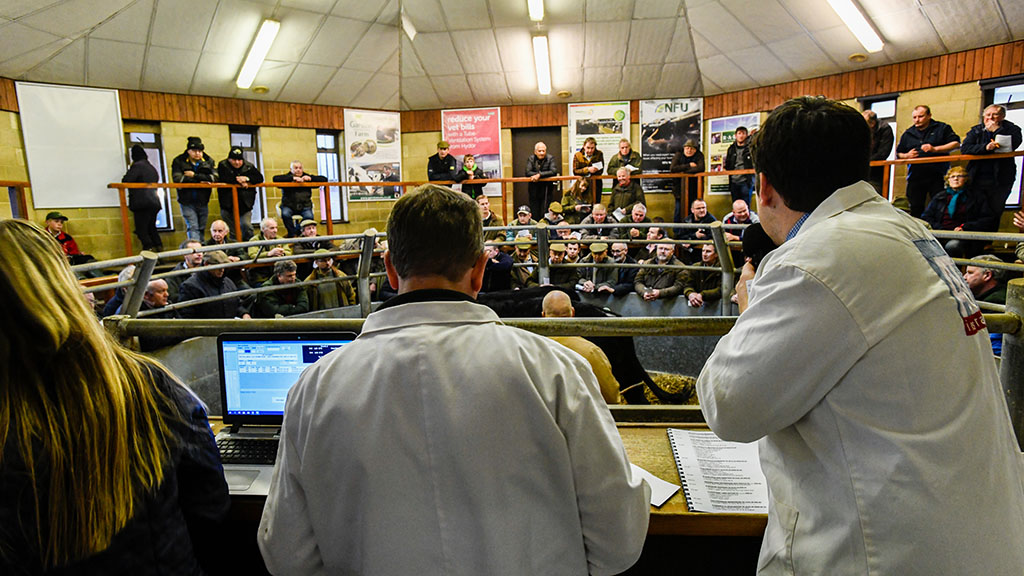 Auction marts offer advice to farmers to limit coronavirus spread