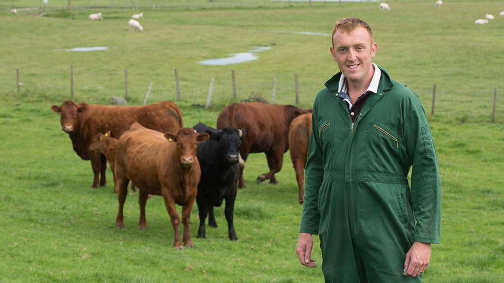 Sheep, beef and egg producer from Ulverston, Cumbria