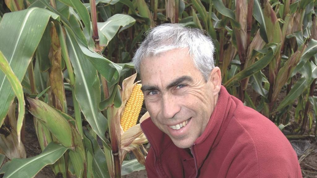Strong establishment is crucial for maize success