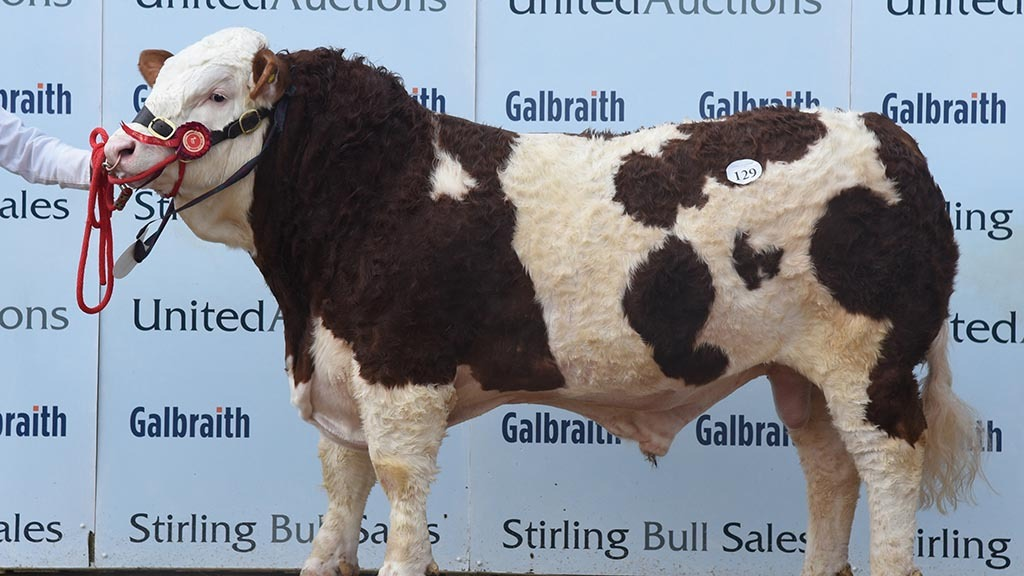 Ranfurly Jackpot J12 18, which sold for 9,000gns