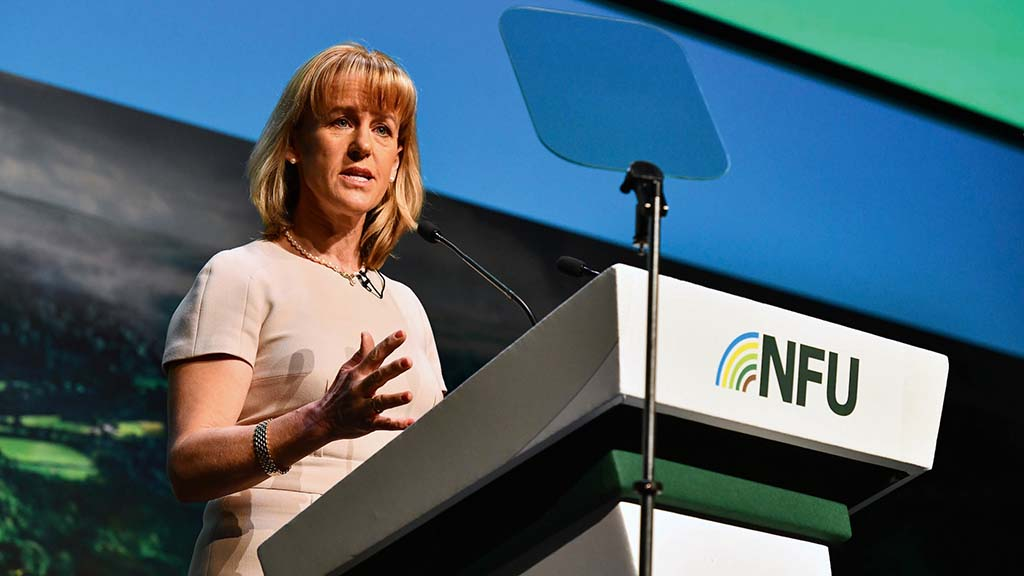 Standards battle 'biggest political challenge' ever faced by NFU, says Batters
