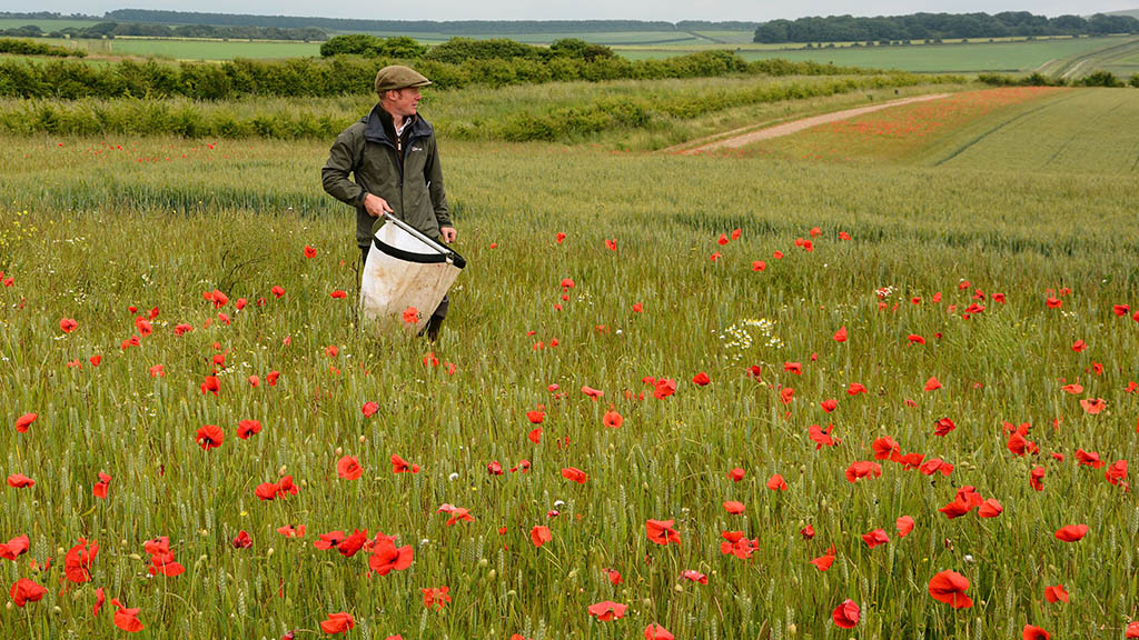 Gamekeepers contribute to 'high levels' of conservation as thousands show green credentials