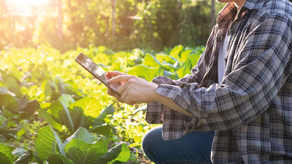 Free opportunity for arable farmers to have their farm software scrutinised