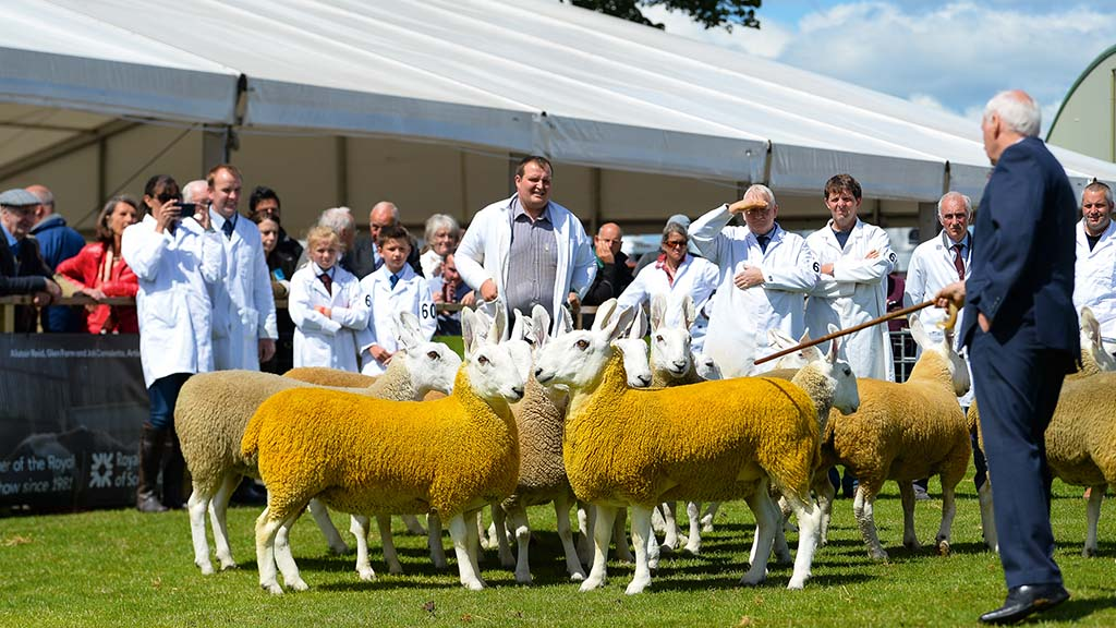 Massive fundraising effort launched to save Royal Highland Show
