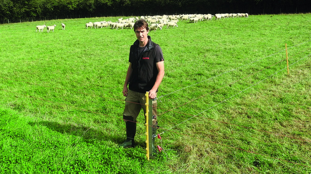 Soil health focus underpins quest for sustainable lamb production