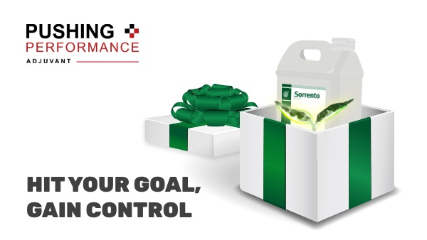 Take back control of weeds this spring with Sorrento