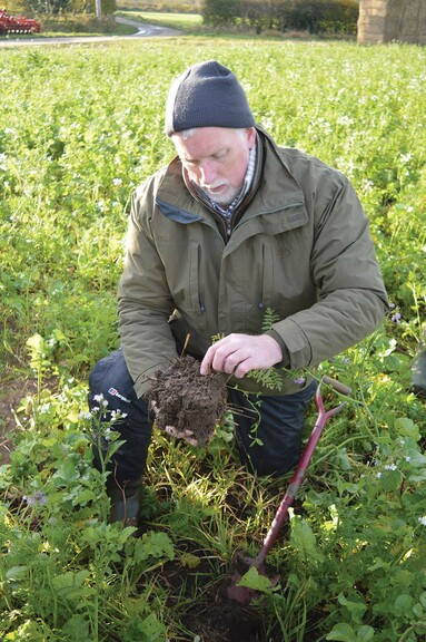 Online soil health guide launched