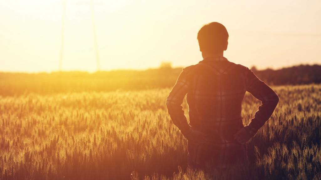Agriculture 'best occupation' for work-life balance amid pandemic, survey reveals