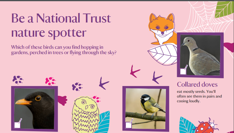 Be a National Trust nature spotter