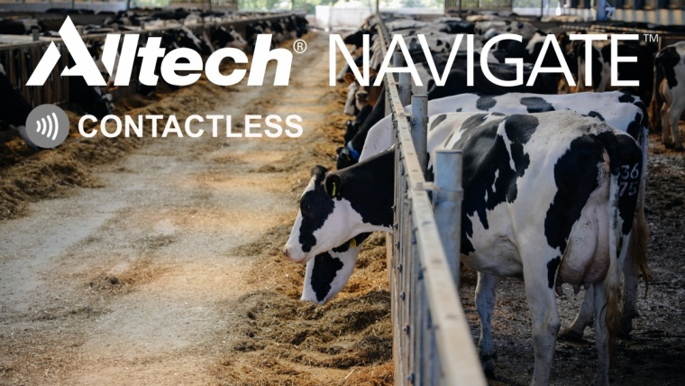 Alltech service reduces dairy farm waste while going 'contactless'