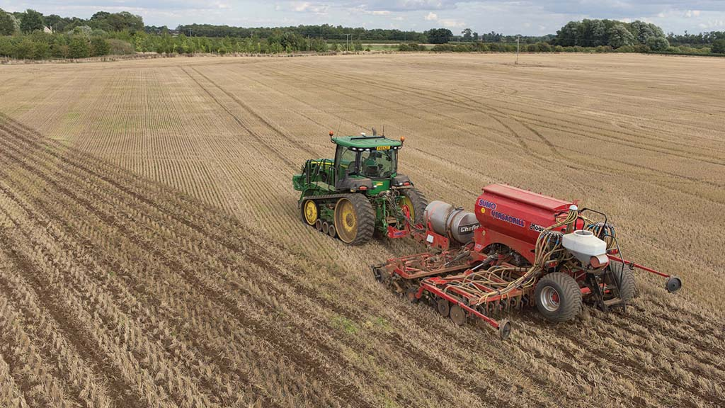 How to get early-sown OSR off to a good start