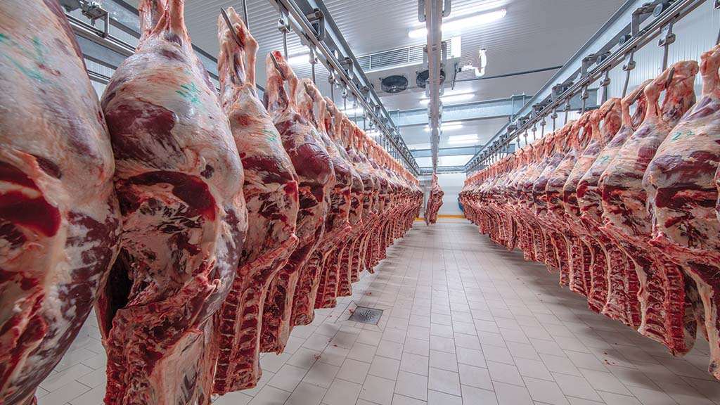 Covid-19 highlights the importance of the domestic supply of feed meat