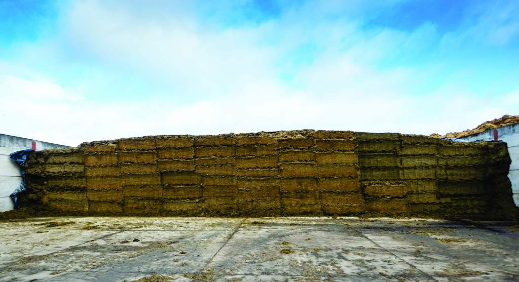 Included in each nine-tonne mix are 7,303kg wholecrop and silage.
