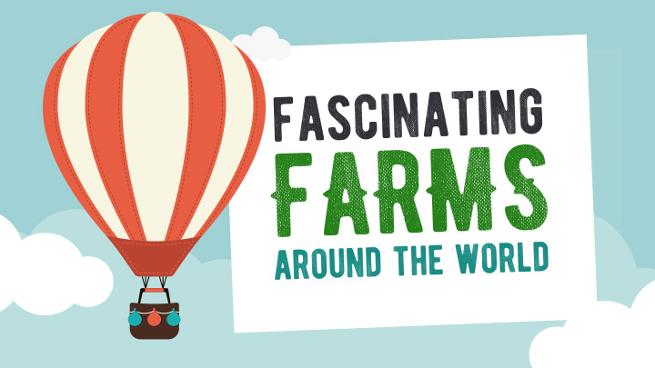 Fascinating Farms Around the World