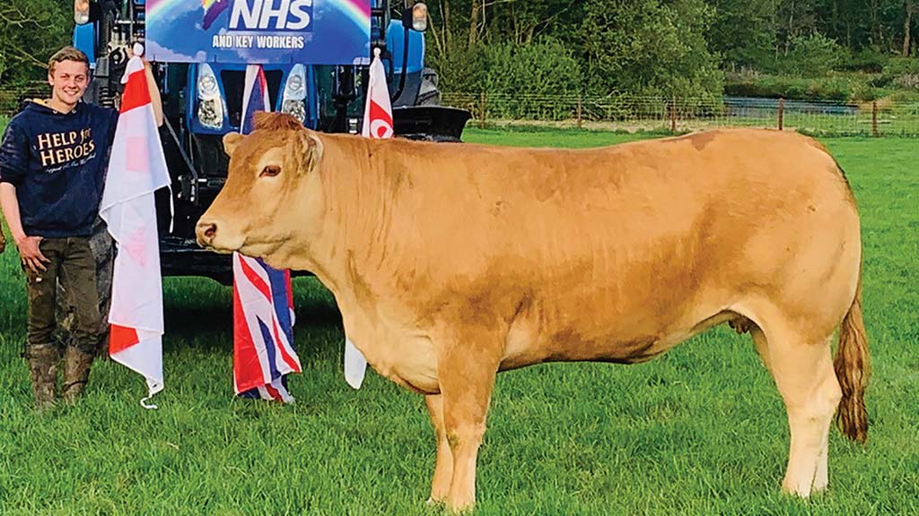 Young farmer salutes NHS and key workers in tractor run