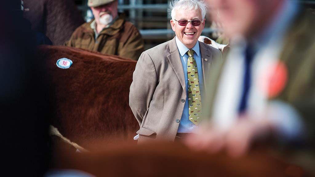 Backbone of Britain: Reflecting on 40 years in the show ring - 'The skills of stock people should never be cast aside'