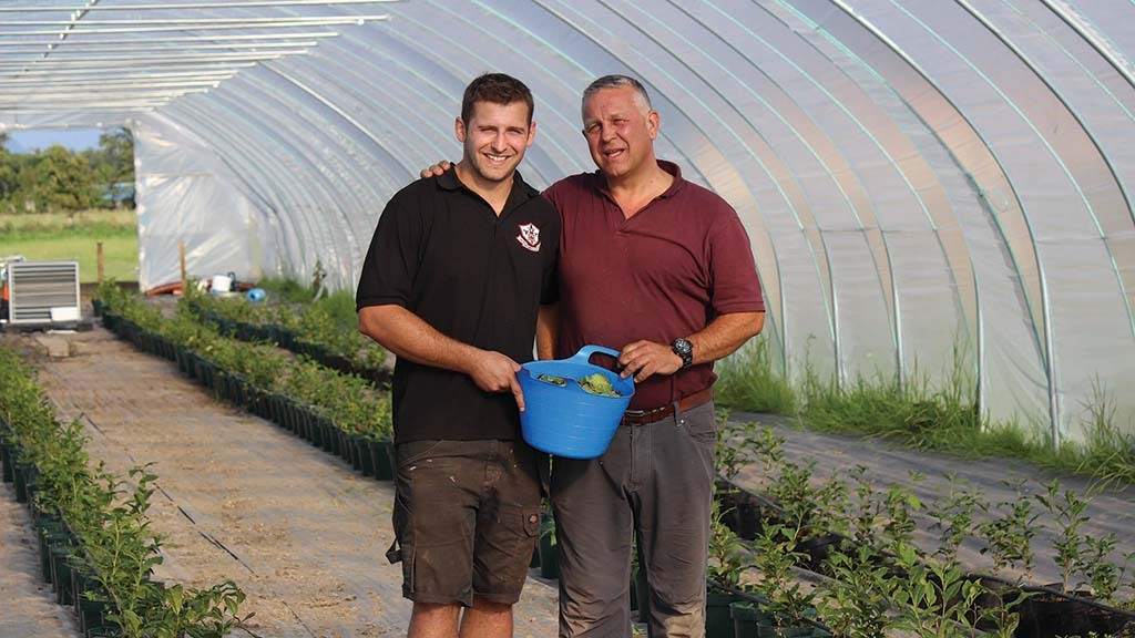 Matthew and Richard Lamb in one of the polytunnels used to grow the farm's tea