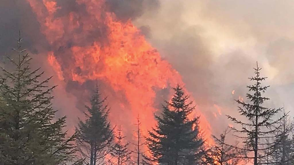 National Trust urges public to 'act responsibly' as wildfire risk continues