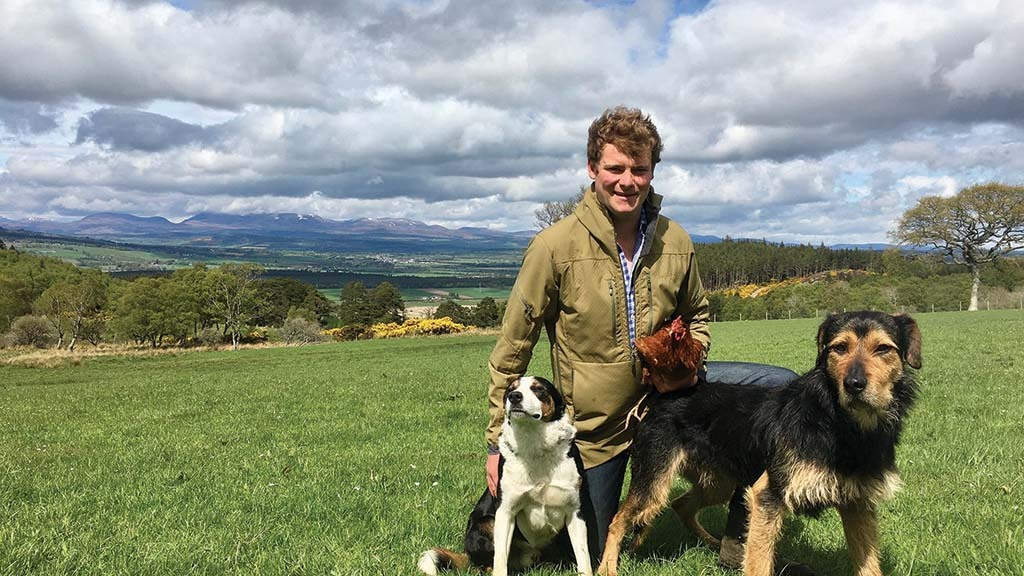 Fraser Murray is building his free-range egg business, Murray Eggs.