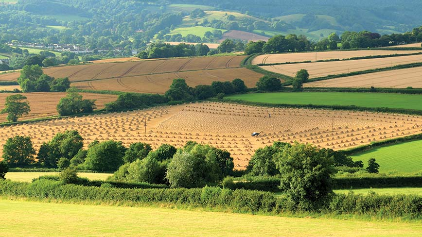 #FarmingCAN - Integrity and innovation is at the heart of UK food system