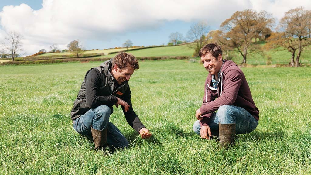 Treating soil as the farm's biggest asset drives strong results