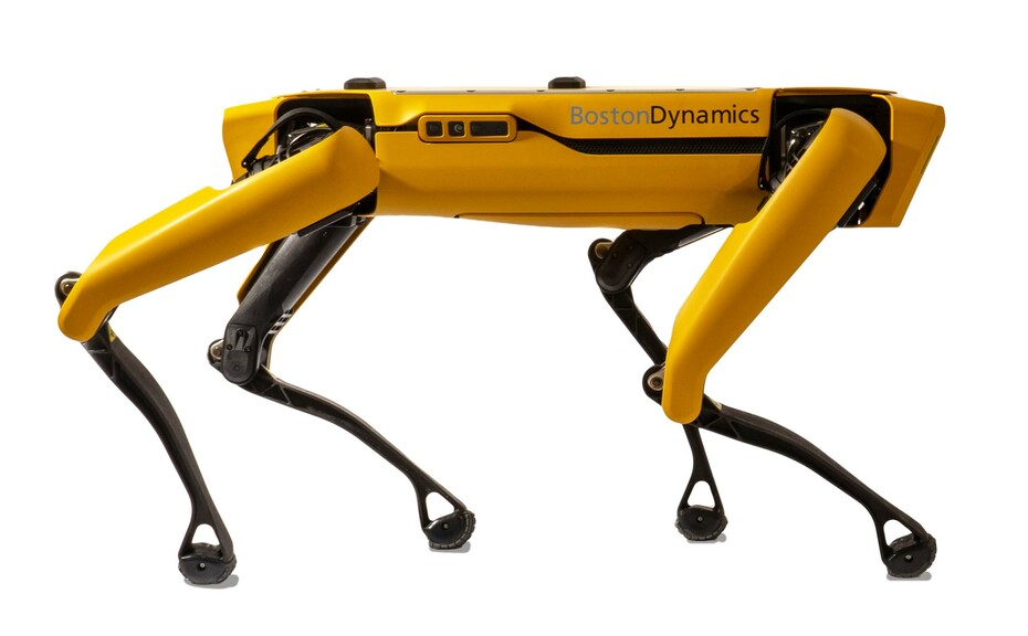 Robotic 'sheepdog' could cost farmers more than £59,000