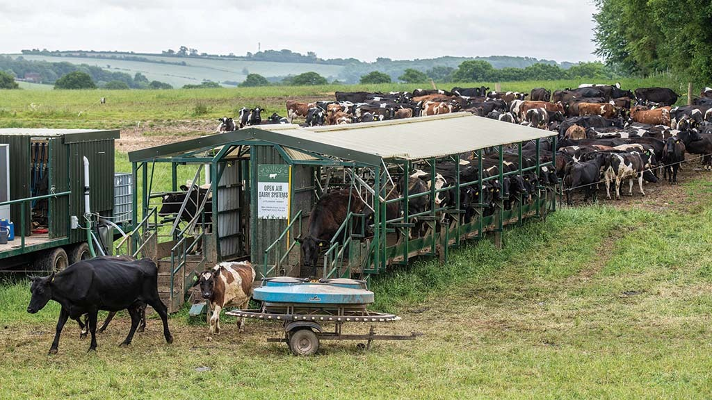 The dairy enterprise uses the mobile Open Air Dairy system.