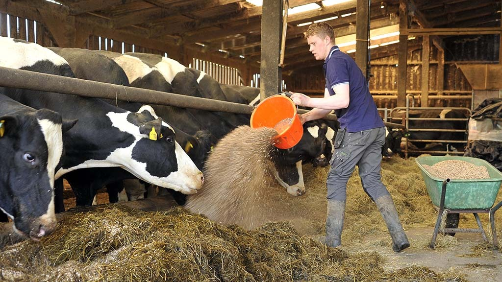 Industry experts urged to contribute to 'skills revolution' in agriculture