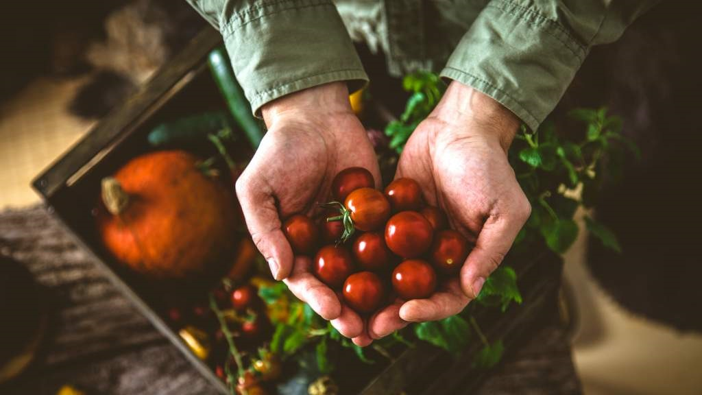 British produce proudly delivered to doorsteps