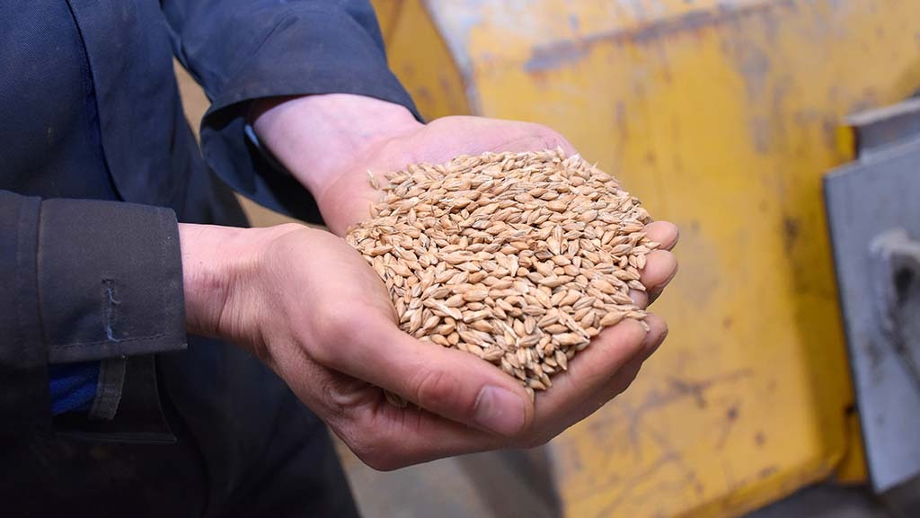 Grain sampling falls to the responsibility of the grower following concerns over health and safety