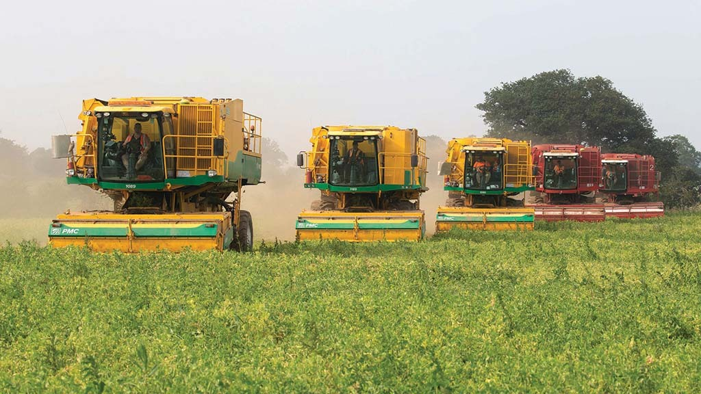 Drilling is completed by June, with harvest of the earlier fields starting soon after.