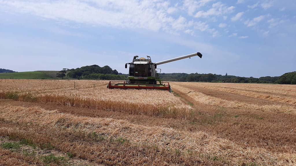 Harvest 20: 'Earliest ever' winter barley harvest commences in south west Scotland