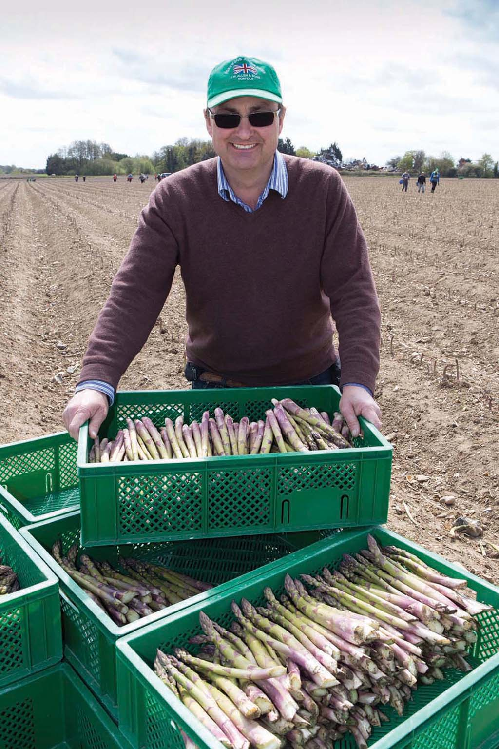 Asparagus supplier Andy Allen