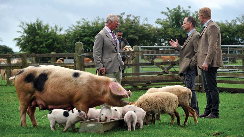 Prince Charles pledges royal support for rare breeds farm parks