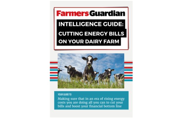 Cutting Energy on Your Dairy Farm Intelligence Guide Download