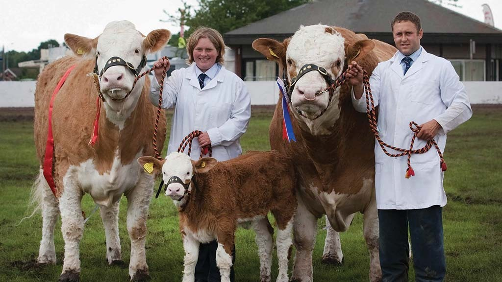 Winners of the Burke trophy in 2012 were Perrywood Wispa, Bridget's own cow and herd stock bull Clonagh World Class